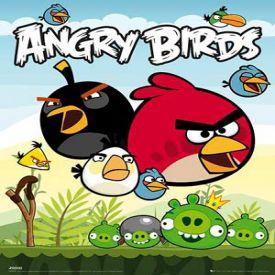 скачать игру Злые Птички бесплатно