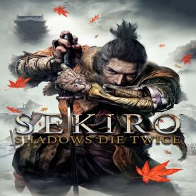 Скачать Sekiro Shadows Die Twice бесплатно на ПК