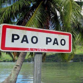 скачать бесплатно и без регистрации игру PaoPao